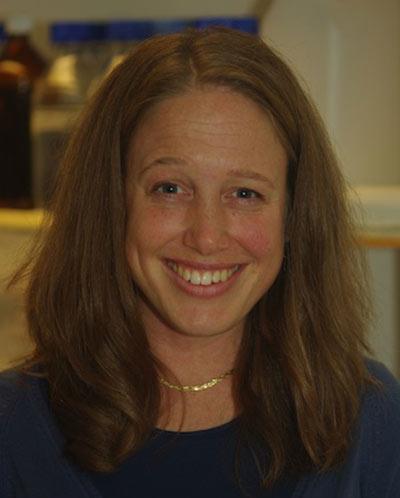 Karolinska Institutet Faculty Mentor Lisa Westerberg on Mentorship