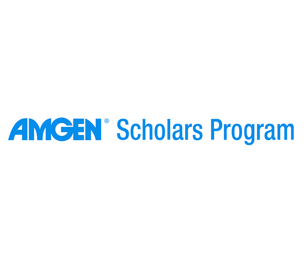 Amgen Scholars – An Undergraduate Summer Research Program in